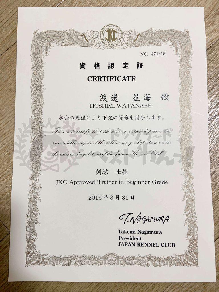 渡邊星海のジャパンケネルクラブ訓練士補資格認定証