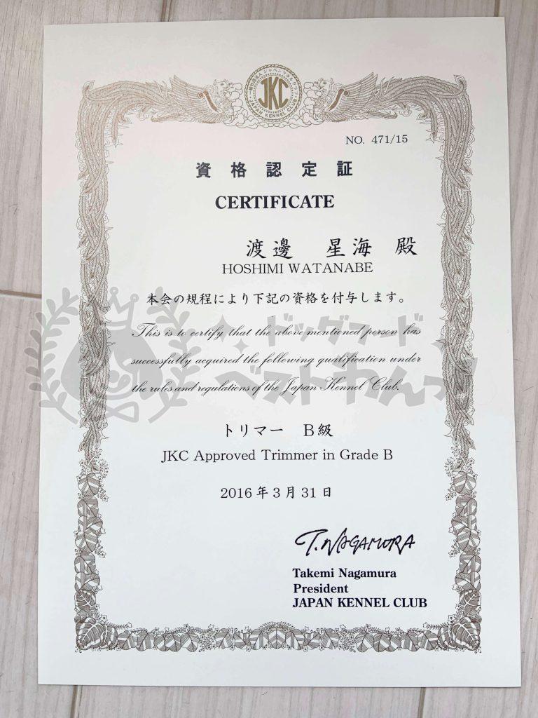 渡邊星海のジャパンケネルクラブトリマーB級資格認定証